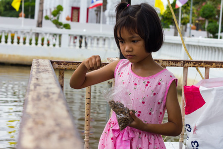 Thailand girl wearing pink fish are feeding on the fence beside a pond in a temple. photo