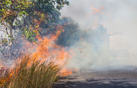 resulted: Severe roadside grass fires caused a thick cloud of smoke, which resulted in a car passing inconvenience.