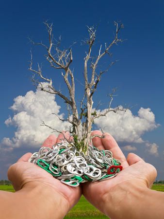 Death of small tree in the hands of an open aluminum cans piled on the backdrop of a cloudy sky. Stock Photo