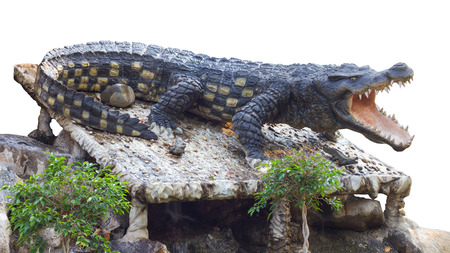 acts: Isolate Statue large crocodile was agape on the rocks in the garden, which acts like the real thing.