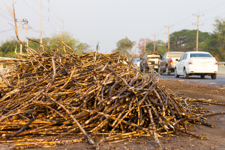 scrap heap: Scrap heap cane blocking traffic on the road, which has blockaded the car sailed carefully. Stock Photo