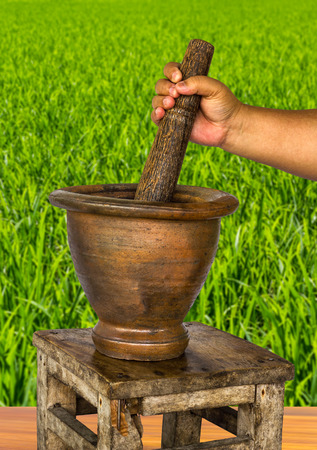 mortar and pestle: Obese female hand holding the handle of a mortar pestle pounding on the bench with a backdrop of green fields.