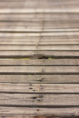 fastened: Background blurred close-up of an old bridge made of wood peg fastened with screws disintegrated. Stock Photo