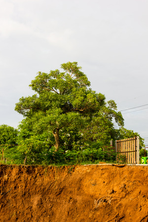 groundwater: Slide soil erosion caused by groundwater into the river with a tree growing on the ground.