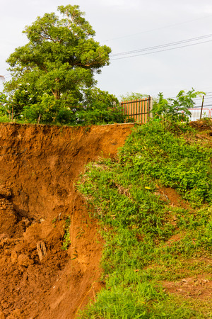land slide: Slide soil erosion caused by groundwater into the river with a tree growing on the ground.