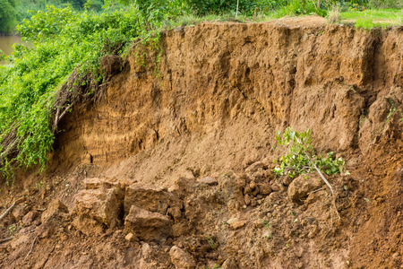 mud slide: Sectional layer of underground water slides down due to erosion of the river is covered with grass. Stock Photo