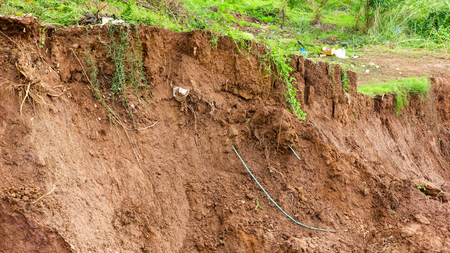 mud slide: Soil slides down the river bank erosion due to water damage which has underground grass grow.