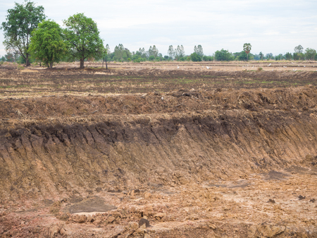 dug: View wells which dry soil dug for water in rice farming in Thailand with some trees.