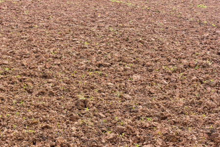 tillage: Surface soil tillage agriculture, which was completed in preparation for planting crops. Stock Photo