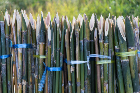 Close-sharp bamboo fence, which bound together tightly background blur.