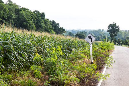 signposted: Overlooking cornfields and forests beside a rural road on the hill, turn left signposted. Stock Photo
