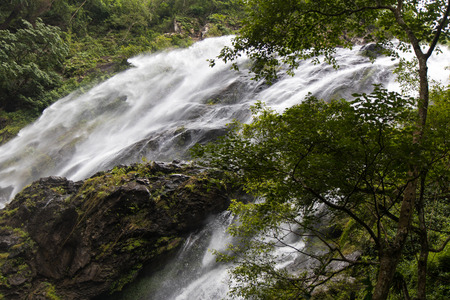 swiftly: Scenic views of the waterfall, which flows swiftly from a rocky cliff with trees growing nearby.
