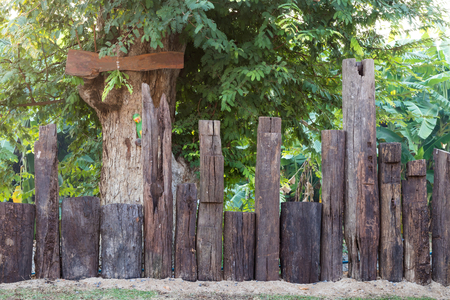 unevenly: Many older Poles row stump unevenly mounted on the sand near trees and signs. Stock Photo