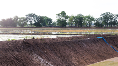 dug well: Ground-level views of a well in rice paddies, which were dug to collect water for drought. Stock Photo
