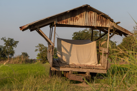 View of the old zinc hut with mosquito nets tied during daytime on rice paddy fields in rural areas.