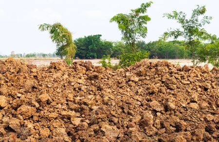 Close-up of a pile of dirt, gravel, and stones that have been dug up and deposited on the arid rice fields in the Thai countryside.