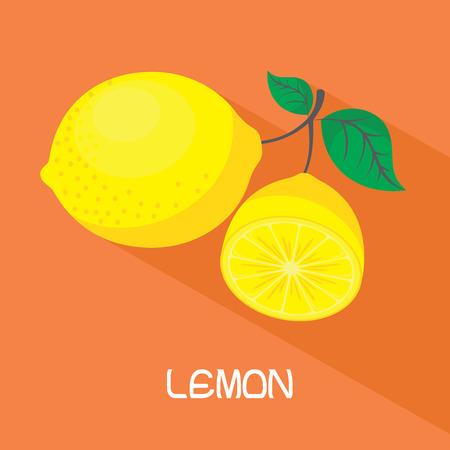 Vector lemon. Fresh lemon fruits, collection of vector illustrations Illustration