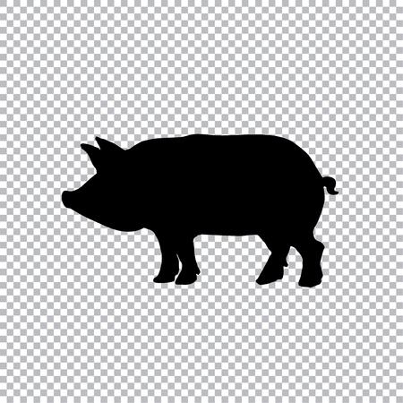 돼지 실루엣 - 검은 벡터 일러스트