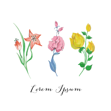 Hand Painted Watercolor Vector Flowers Illustration