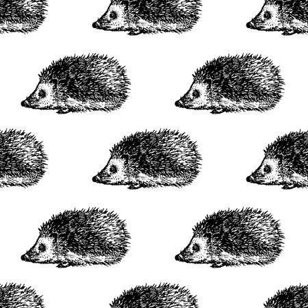 Hand drawn hedgehog seamless pattern design. Vector illustration.
