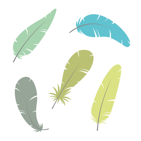 Feather. Vector Illustration. eps10