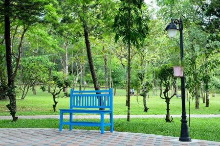 blue chair in garden photo