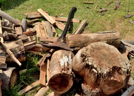 cutting the firewood with ax photo