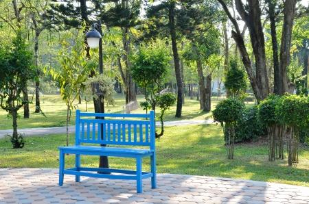 timber bench seat: Blue wooden bench in garden