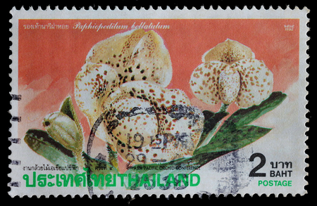 asia pacific: THAILAND - CIRCA 1992    postage stamp printed in Thailand shows orchid  4th Asia Pacific orchid conference , circa 1992 Editorial