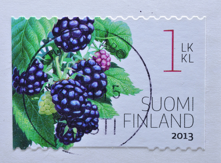 philatelist: FINLAND - CIRCA 2013 : postage stamp printed in Finland shows Berries fruit, circa 2013