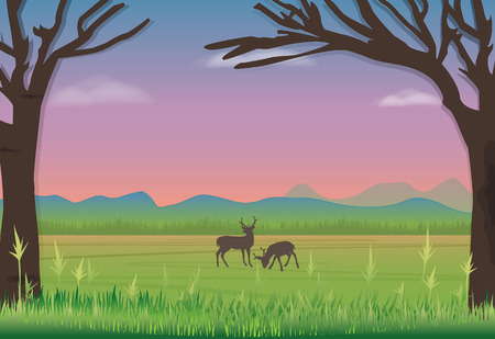 Deer standing in meadow. Nature landscape background Illustration