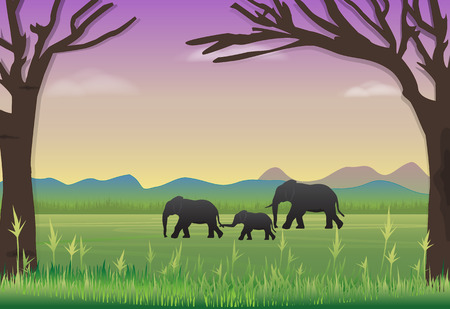 Elephants family in meadow. Nature landscape background Illustration