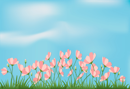 Flowers and grass with blue sky image illustration