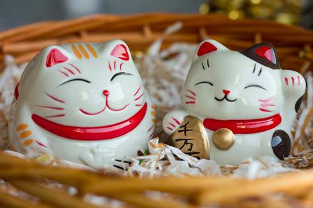 fortune cat: cat doll  money Stock Photo