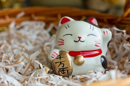 money cat: cat doll  money Stock Photo