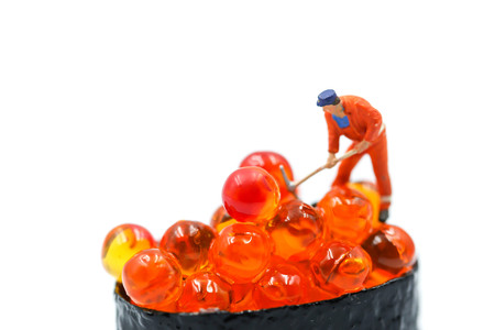 Miniature people : worker with Salmon egg on sushi nigiri roll on white background. Фото со стока