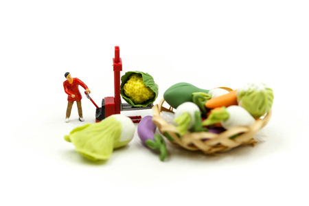 Miniature people : Wifehouse womans Sell Harvest Products Farm Assortment of fresh fruits and vegetables Market Seasonal Sale. Stock Photo