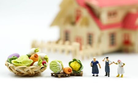 Miniature people : Farmer gardener in action with market,Farm Local Market Concept