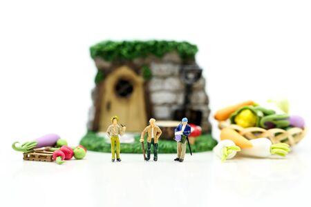 Miniature people : Farmer gardener in action with market, Farm Local Market Concept. Archivio Fotografico - 133955680