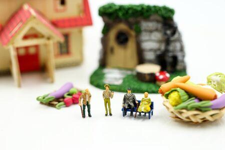 Miniature people : Farmer gardener in action with market, Farm Local Market Concept. Archivio Fotografico - 133955682