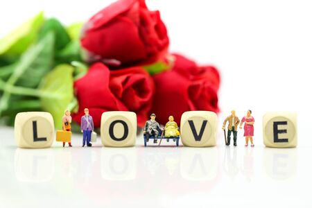 Miniature people : Couple lover and Love text wooden blocks with rose and gift box, Lover concept. Archivio Fotografico - 133955679