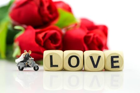 Miniature people : Couple lover and Love text wooden blocks with rose and gift box, Lover concept. Archivio Fotografico - 133955685