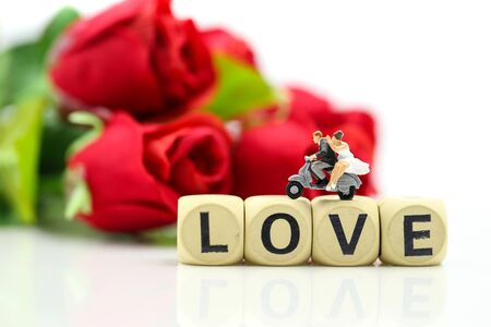 Miniature people : Couple lover and Love text wooden blocks with rose and gift box, Lover concept. Archivio Fotografico - 133956351