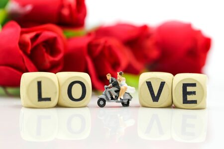 Miniature people : Couple lover and Love text wooden blocks with rose and gift box, Lover concept. Archivio Fotografico - 133956110