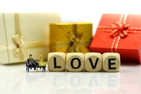 Miniature people : Couple lover and Love text wooden blocks with rose and gift box, Lover concept. Archivio Fotografico - 133956111