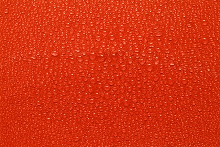 Water drops on red paper photo