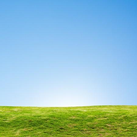 Green Field Landscape Stock Photo - 7702841