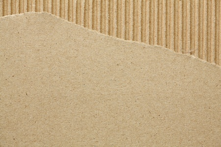 cardboard: Carton