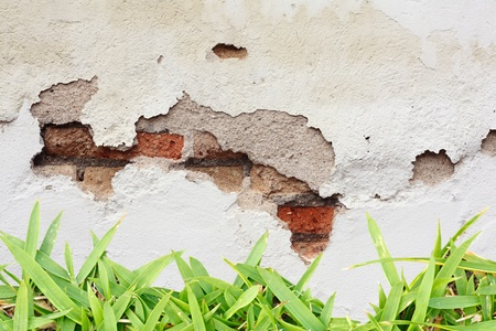 Crack Wall and Grass Stock Photo - 9042447