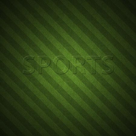 baseball field: Green